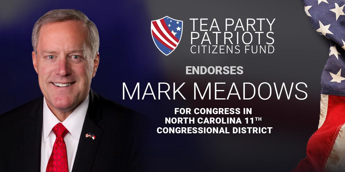 Endorse-Meadows-Header
